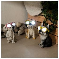 etc-shop LED Dekofigur, Solar Hunde Solarlampen für Außen Garten Tiere Gartenfigur Hund Solar Figur Balkon, verschiedene Hunde und Farben, je 2x LED, LxH 15x19,5 cm, 3er Set