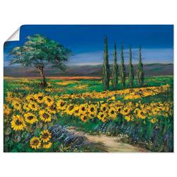 Artland Wandbild Sonnenblumenfeld, Blumen (1 Stück) 40 cm x 30 cm