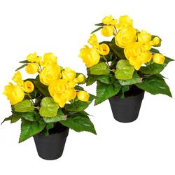 Künstliche Zimmerpflanze Eleonore Begonien, DELAVITA, Höhe 24 cm, 2er Set gelb