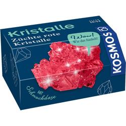 Kosmos Spiel, Kristalle - Rote Kristalle selbst züchten - mit Schmuckdose
