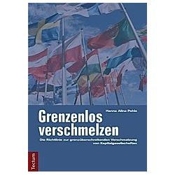 Grenzenlos verschmelzen. Hanna Aline Pohle  - Buch
