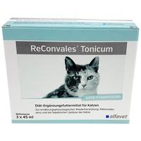 Alfavet ReConvales Tonicum Katze