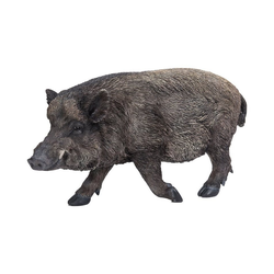 Dehner Dekofigur Wildschwein, 59.5 x 30.5 x 20 cm, Polyresin