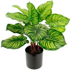 Künstliche Zimmerpflanze Maranthus, I.GE.A., Höhe 40 cm