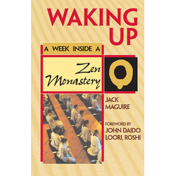 Waking Up: eBook von Jack Maguire