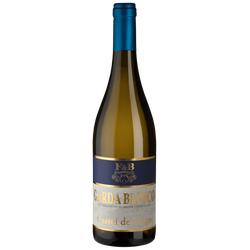 Garda Bianco Castel del Lago - 2020 - Riolite Vini - Italienischer Weißwein