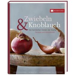 Zwiebeln & Knoblauch
