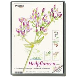 KK-Box Heilpflanzen
