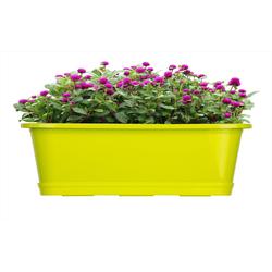 BigDean Blumenkasten für den Balkon − 2x Balkonkasten 40 cm Lime mit Untersetzer (2 Stück) 40 cm