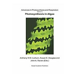 Photosynthesis in Algae - Buch