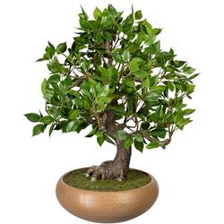 Kunstbonsai Bonsai Ficus Bonsai Ficus, Creativ green, Höhe 50 cm, in Keramikschale