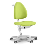Moll Funktionsmöbel GmbH Maximo grün / grau