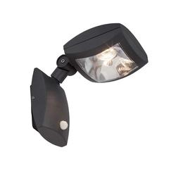 AEG GUARDIANO LED Wandleuchte Lotuseffekt 33 cm Anthrazit Bewegungsmelder, AEG290005