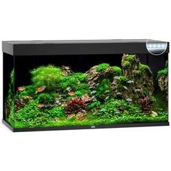 JUWEL Rio 350 LED Aquarium, 350 Liter, schwarz