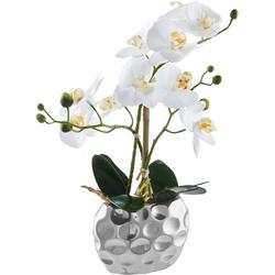 Kunstpflanze Orchidee Orchidee, Leonique, Höhe 38 cm weiß