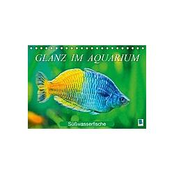 Glanz im Aquarium: Süßwasserfische (Tischkalender 2021 DIN A5 quer) - Kalender