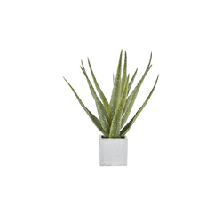 Aloe im Keramiktopf  Kunstblume ¦ grün ¦ Keramik, Kunststoff