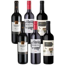 6er-Probierpaket Malbec - Weinpakete