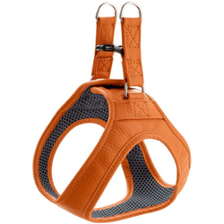 Geschirr Hilo orange XXS-XS