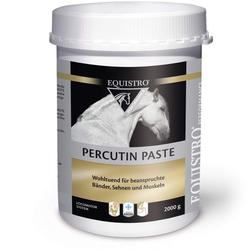 EQUISTRO Percutin Paste äußerlich vet. 2 kg