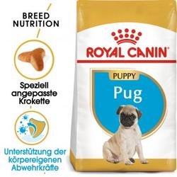 Royal Canin Puppy Mops Hundefutter 1.5 kg
