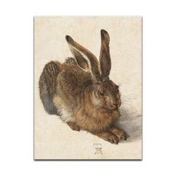 Bilderdepot24 Wandbild, Albrecht Dürer - Feldhase bunt 20 cm x 30 cm