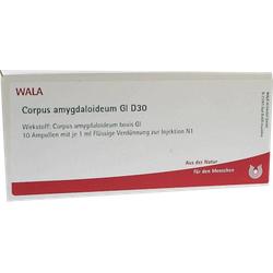 CORPUS AMYGDALOIDEUM GL D 30 Ampullen 10X1 ml