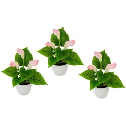 Kunstpflanze Mini Calla Calla, I.GE.A., Höhe 20 cm rosa