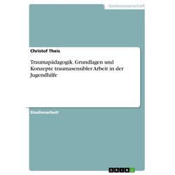 Traumapädagogik. Grundlagen und Konzepte traumasensibler Arbeit in der Jugendhilfe: eBook von Christof Theis