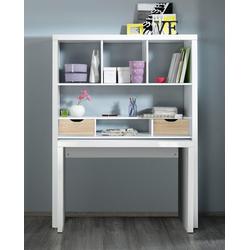 HMW Büro-Set Shelf & Write, Regal und Schreibtisch