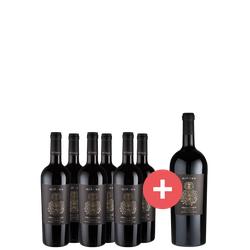 6er-Paket Miluna Primitivo Salento + GRATIS Magnum - Weinpakete