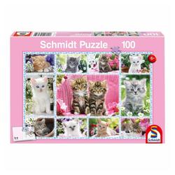 Schmidt Spiele Puzzle Katzenbabys, 100 Puzzleteile bunt