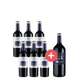 6er-Paket Solnia Colección Rafa + GRATIS Magnumflasche - Weinpakete