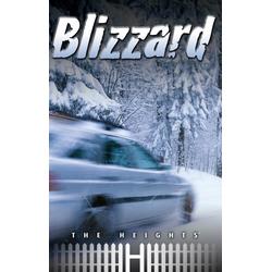 Blizzard: eBook von