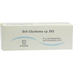 Br8 Glechoma cp JSO