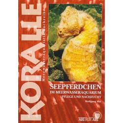 Seepferdchen im Meerwasseraquarium als Buch von Wolfgang Mai