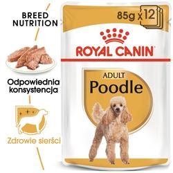 ROYAL CANIN Poodle Adult in Soße Hundefutter nass für Pudel 85 g