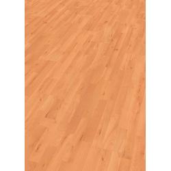 EGGER Laminat BASIC Stangl Buche, Packung, ohne Fuge, 2,481 m²/Pkt., Stärke:7 mm