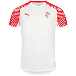 DHF Dänemark PUMA Herren Handball Trikot 750675-12 - XL