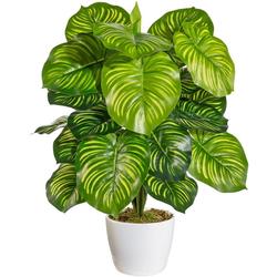 Künstliche Zimmerpflanze Maleroy Maranta, Home affaire, Höhe 50 cm, im Keramiktopf