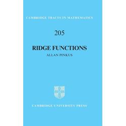 Ridge Functions als Buch von Allan Pinkus