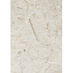 VBS Seidenpapier Natur, 50 cm x 70 cm