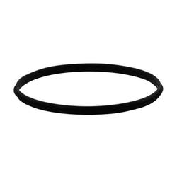 Ø 250 mm Schiedel ICS Dichtring Viton