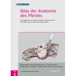 Atlas der Anatomie des Pferdes als Buch von BUDRAS ANATOMIE