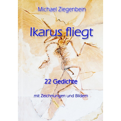 Ikarus fliegt als Buch von Michael Ziegenbein