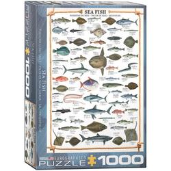 empireposter Puzzle Seefische Meeresfische - 1000 Teile Puzzle im Format 68x48 cm, Puzzleteile