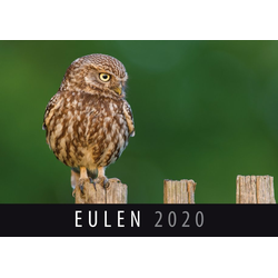 Eulen 2020