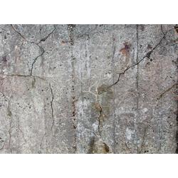 living walls Fototapete Beton Vintage, glatt, (1 St), 350 x 255 cm