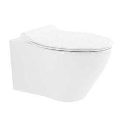 Alpenberger Tiefspül-WC Wand Dusch WC inkl. WC-Sitz mit Bidetfunktion