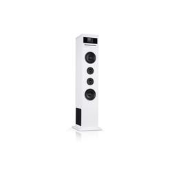 Auna Karaboom 100 Wifi Turmlautsprecher Internetradio DAB+ BT 120W weiß Lautsprecher